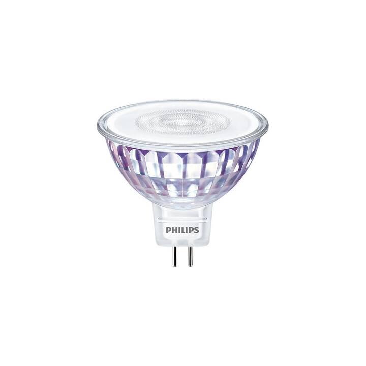 PHILIPS Master LEDspot Lampes (LED, GU5.3, 5.5 W)