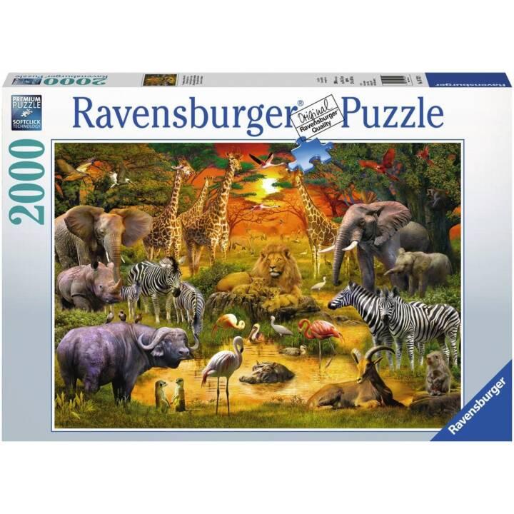 RAVENSBURGER Puzzle - Rendez-vous à la mare