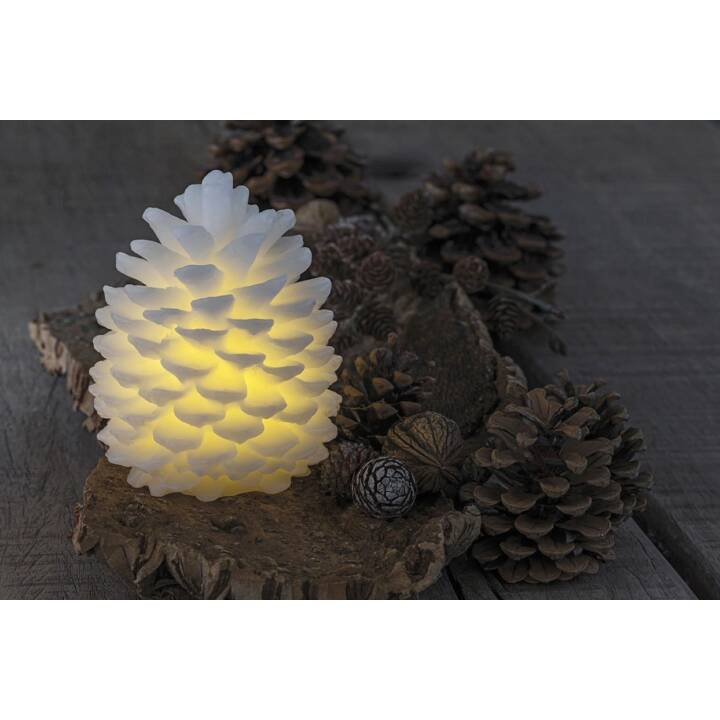 SIRIUS LED wax fir cone blanc