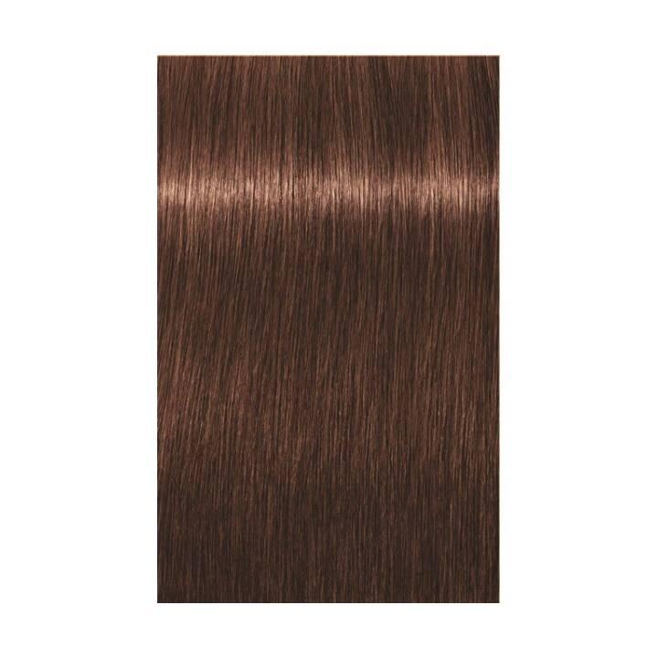 SCHWARZKOPF Igora Royal (6.68, Dark Blonde Chocolate Red)