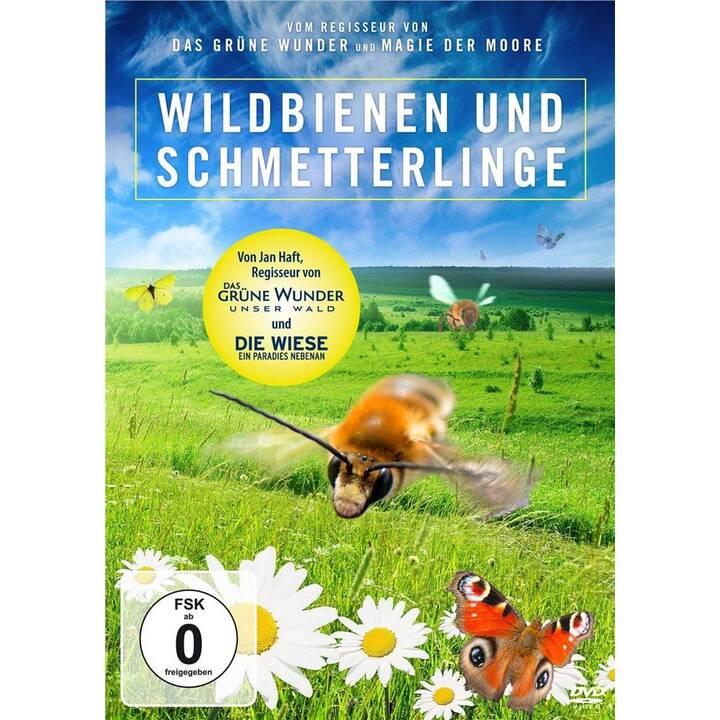 Wildbienen und Schmetterlinge (DE)