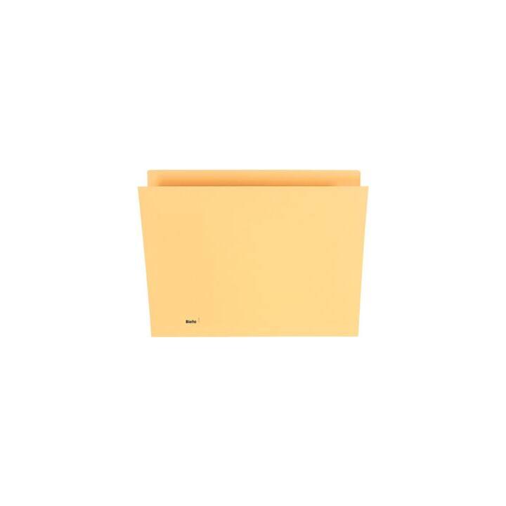 BIELLA Boîtes pour dossiers suspendus (A4, Jaune, 1 pièce)