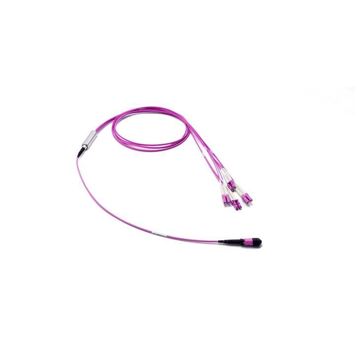 LIGHTWIN MTPQSFP-4XDLC OM4 Cavo di giunzione (LC Multi-Mode, MTP Multimode, 20 m)