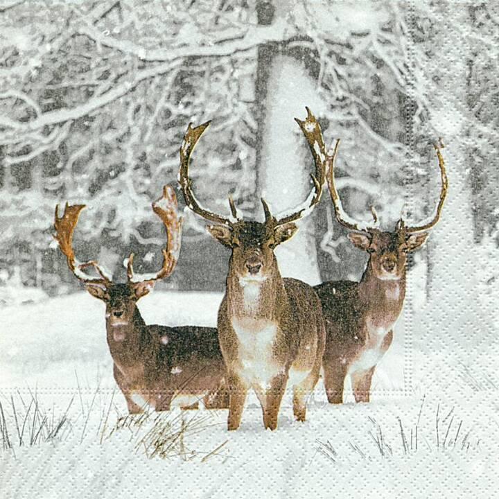 PAPER + DESIGN Tovagliolo di carta Fallow deer (33 cm x 33 cm, 20 pezzo, Animale)