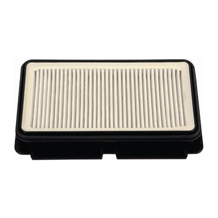 ROWENTA HEPA 13 Filter ZR902501