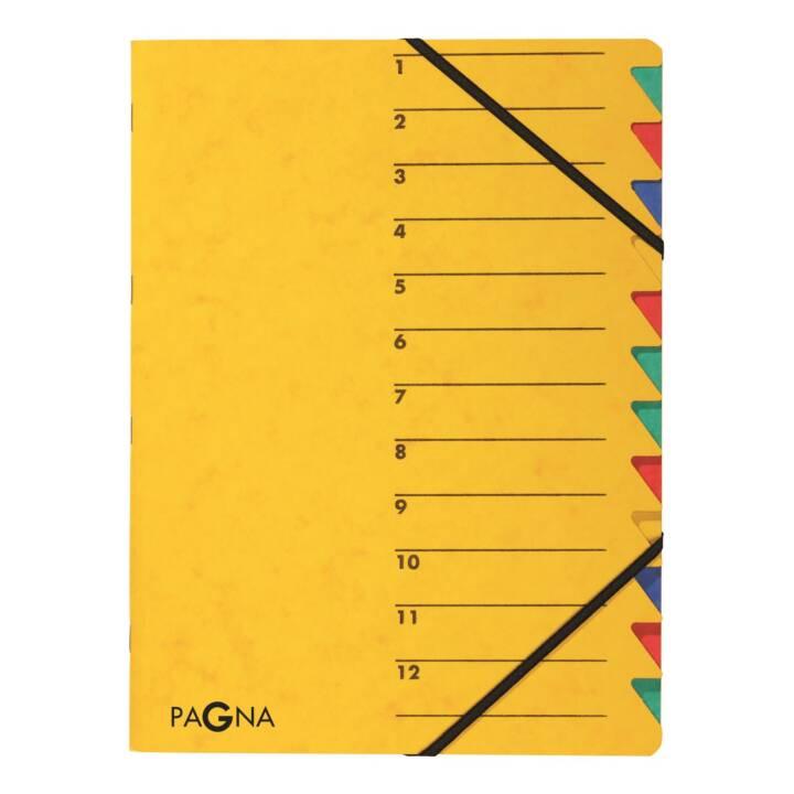 Cartella elastica PAGNA Easy A4 Giallo Giallo
