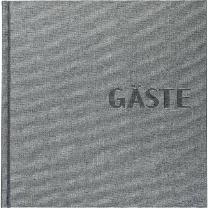 BRUNNEN Guestbook Grigio metallizzato