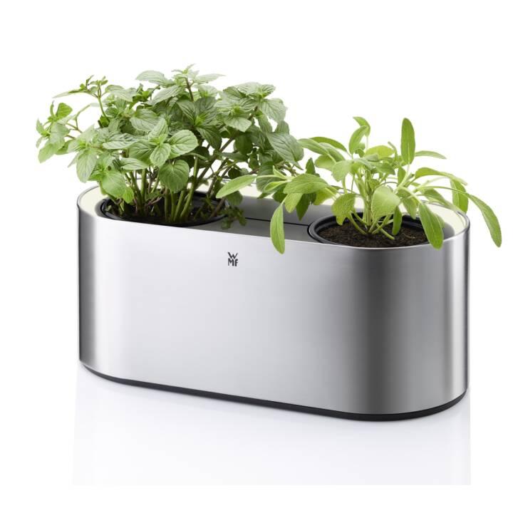 WMF Herb Potente Ambiente Potente di erbe