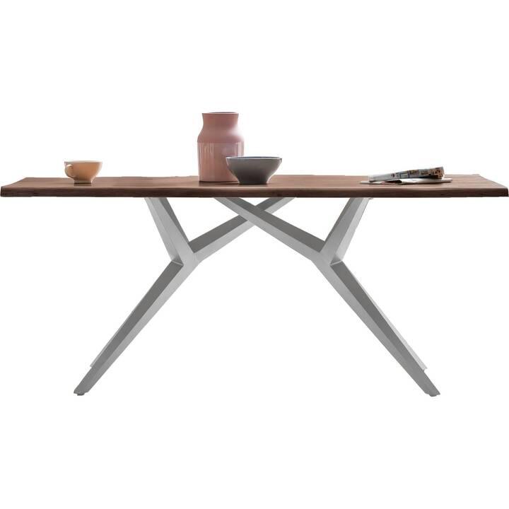 SIT Table de repas (240 cm x 100 cm x 75 cm)