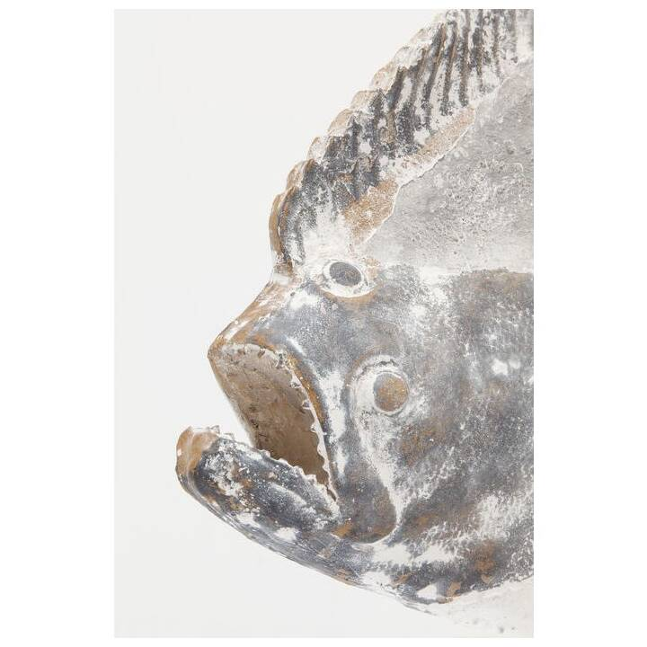 KARE Deko-Figur Pesce Natura (Grau)
