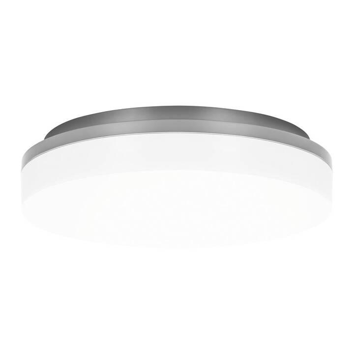 LEDESHI Slice Circle  II (Antracite)