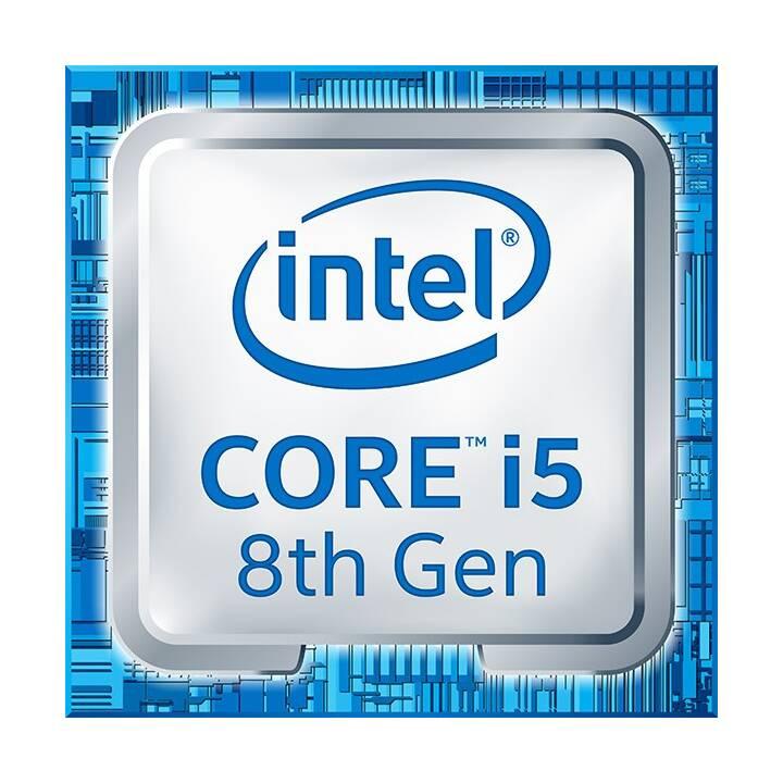 INTEL Core i5-8600 (8. Gen.) (LGA 1151, 3.1 GHz)