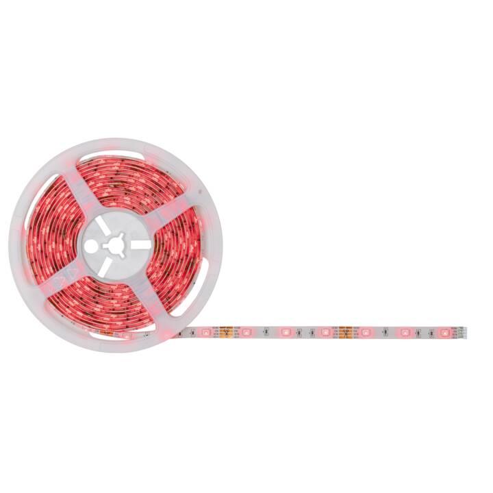 PAULMANN LED-Stripe SimpLED, 5 m RGB
