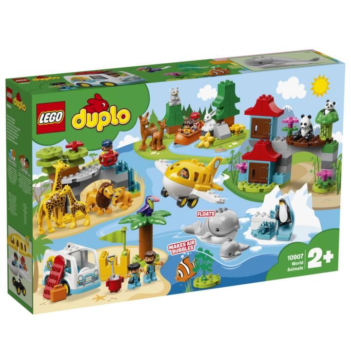 LEGO DUPLO My Town Les animaux du monde (10907)