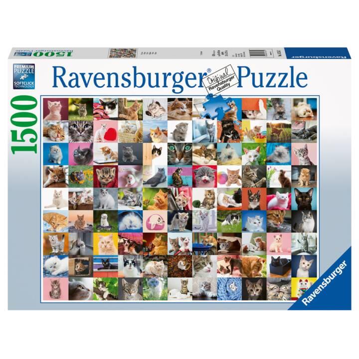 Puzzle 99 Katzen 1500 Teile, 80x60 cm, S