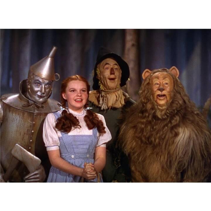 Der Zauberer von Oz (ES, DE, EN)