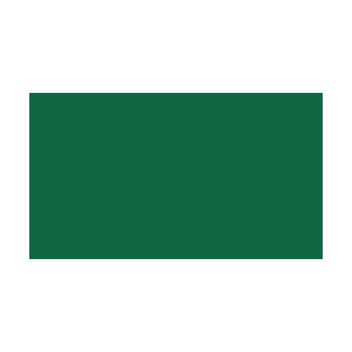 PAPYRUS Tonzeichenpapier A4 grün