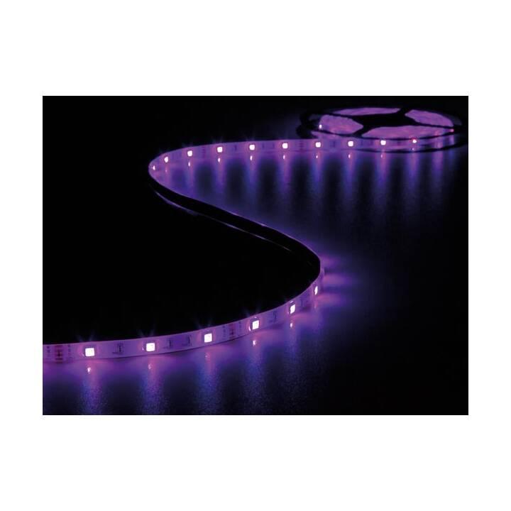 VELLIGHT LED Light-Strip