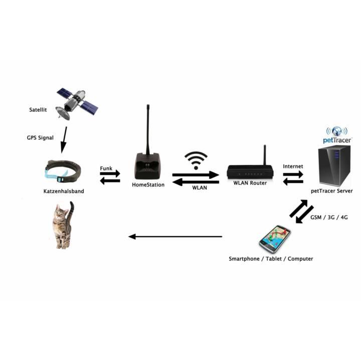 petTracer Katzen-GPS-Ortungsgerät Halsba