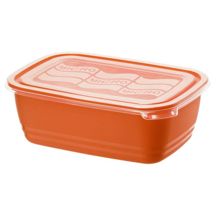 ROTHO Contenitore per alimenti Eco (1.9 l, Plastica)