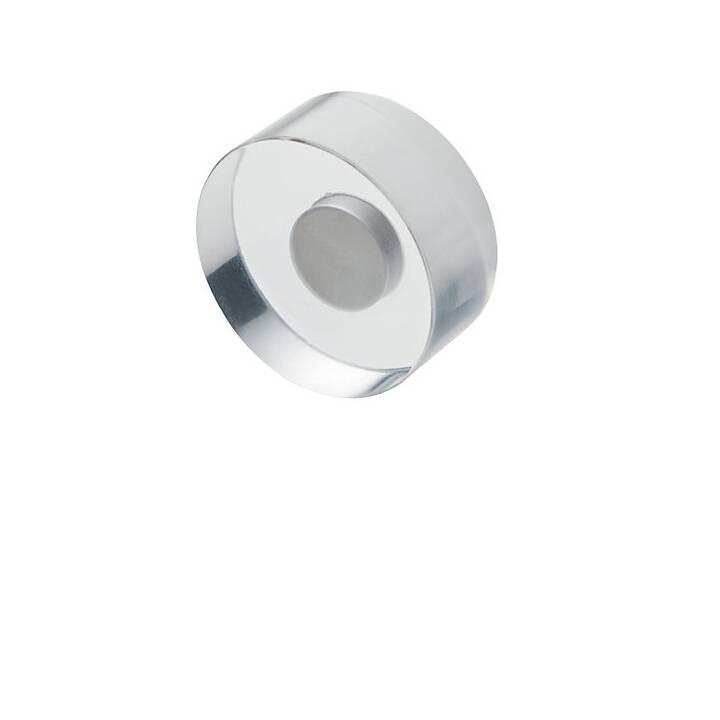 MAGNETOPLAN Puntina magnetico (8 pezzo)