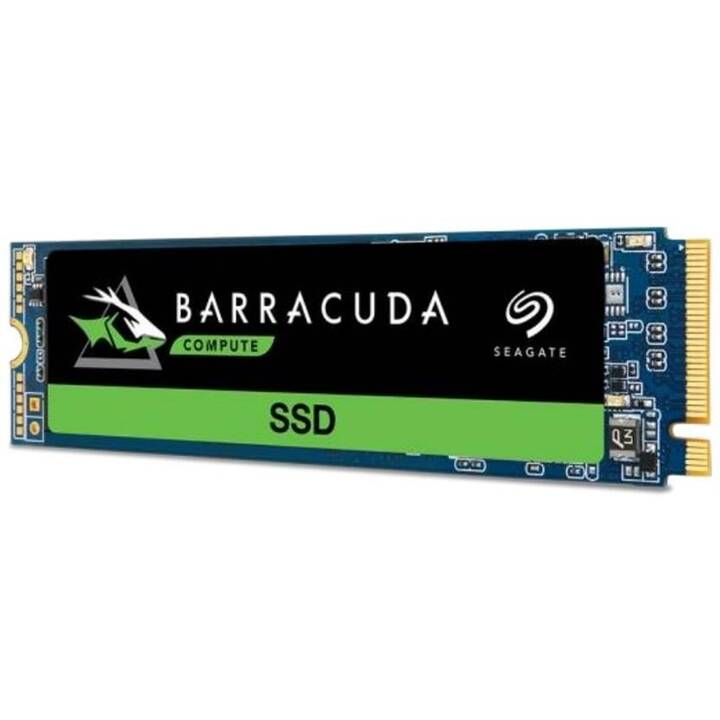 SEAGATE BarraCuda 510 (PCI Express, 250 GB)