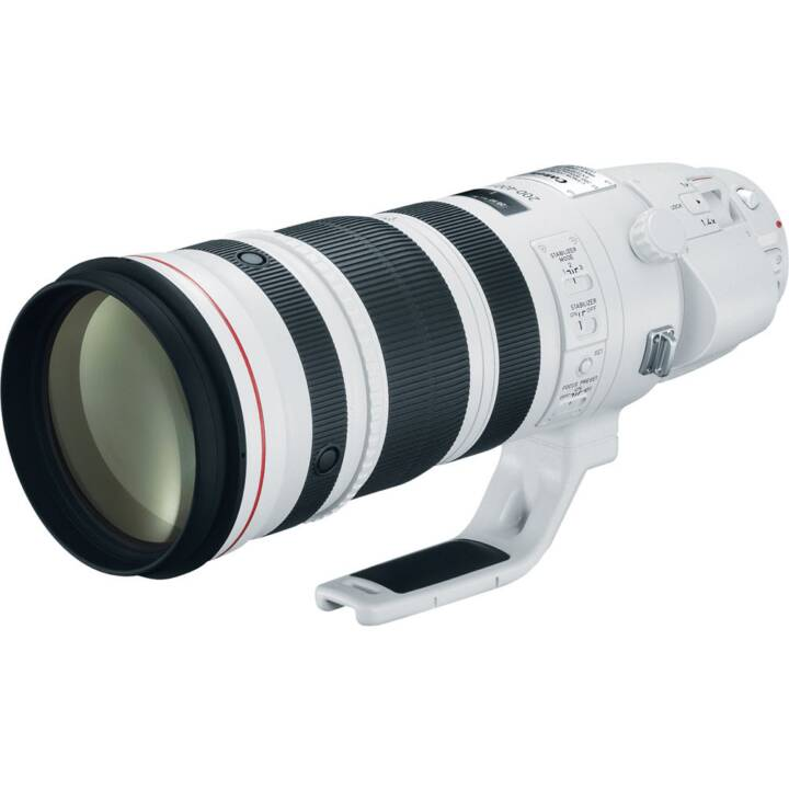 CANON EF 200-400mm f/4.0L IS USM Ext. 1.4x