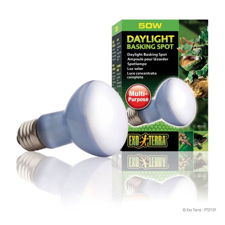 EXOTERRA Lampada luce del giorno (Lampada ad incandesce, 50 W)