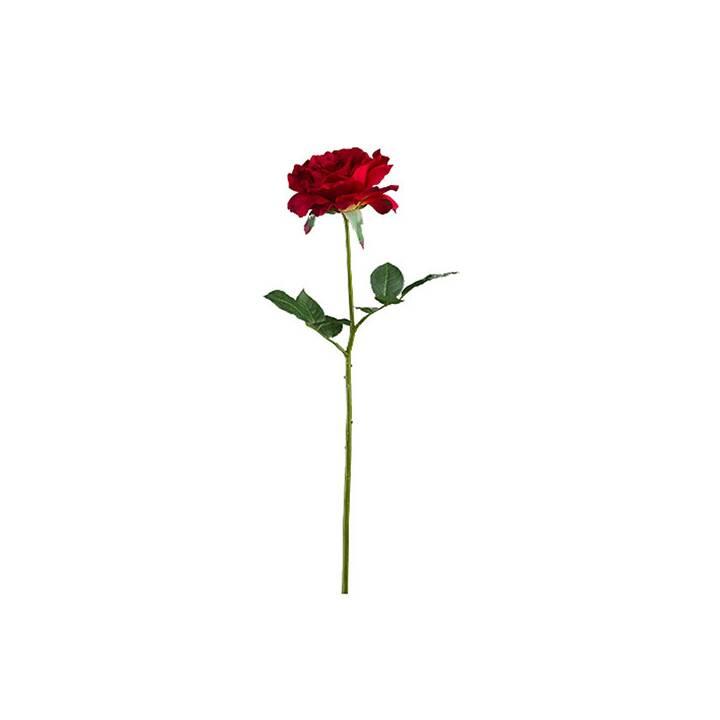 LUWATEX Kunstpflanze Rose (Rot)