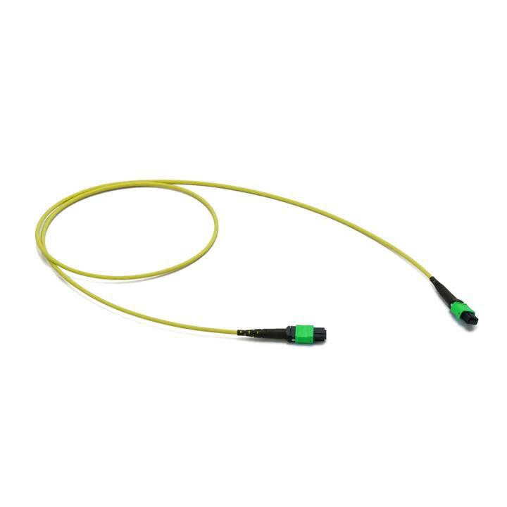 LIGHTWIN MTP-PA-F-M Cavo dati interni (MPO, MTP Multimode, 20 m)