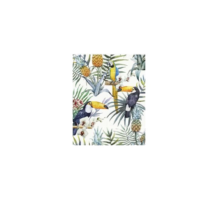 IXXI Tattuaggio da parete Tiger jungle & Toucan family (Multicolore)