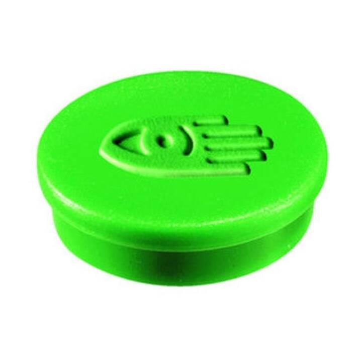 LEGAMASTER Magnet (10 Stück)
