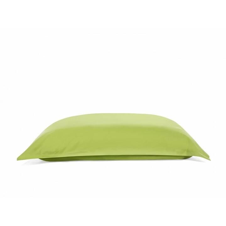 BELIANI Bean bag Big Sitzsack (Grün)