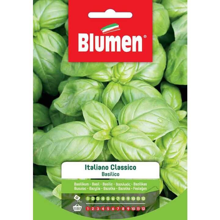 BLUMEN Basilikum Italiano Classico (8 g)
