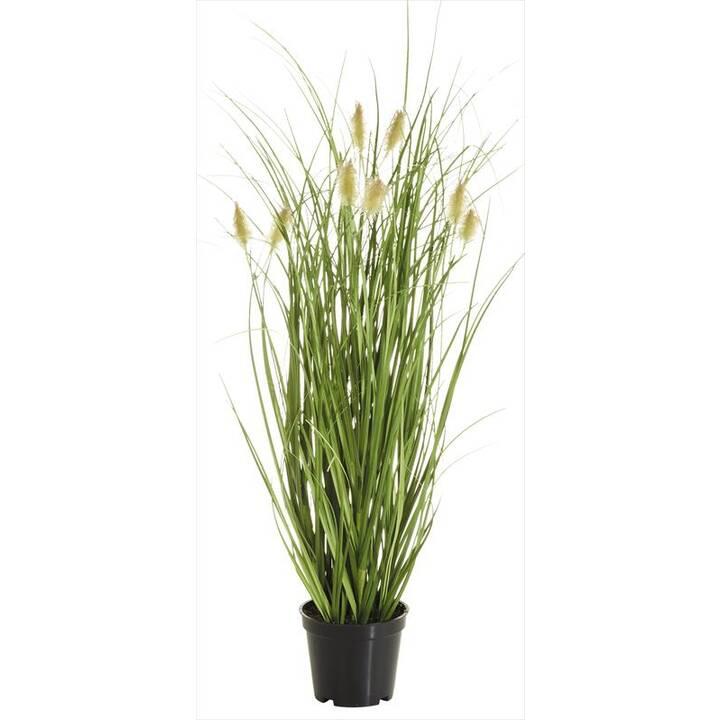 BOTANIC-HAUS Plante artificielle (Jaune, Brun, Vert)