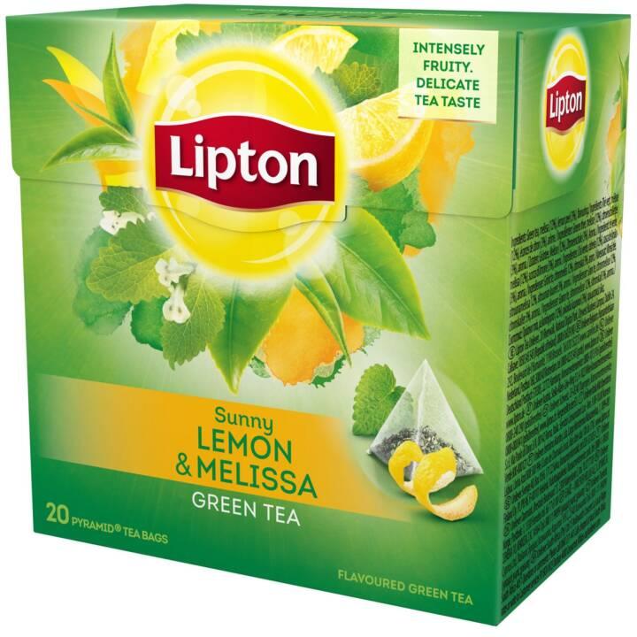 LIPTON Sunny Lemon & Melissa Grüntee (Teebeutel, 20 Stück)