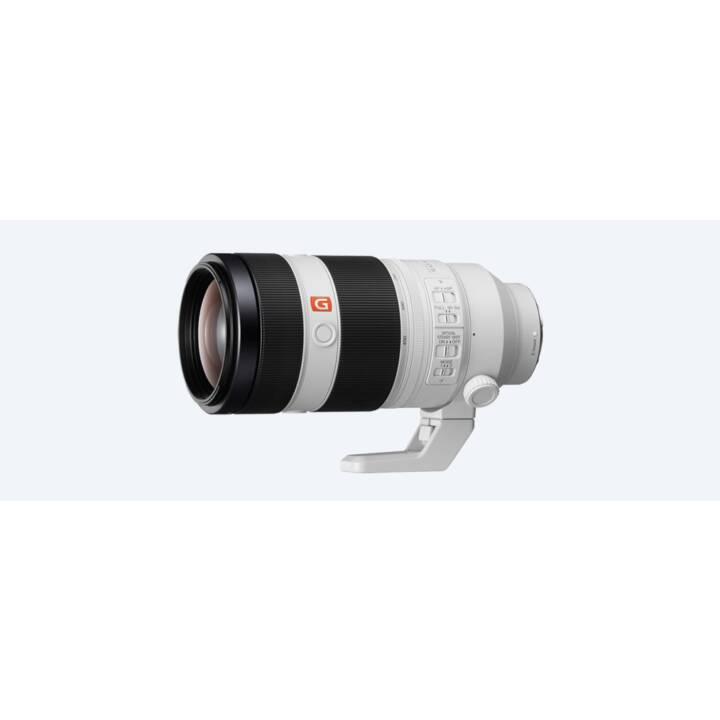 SONY FE 100-400mm f / 4.5-5.6 GM OSS Import