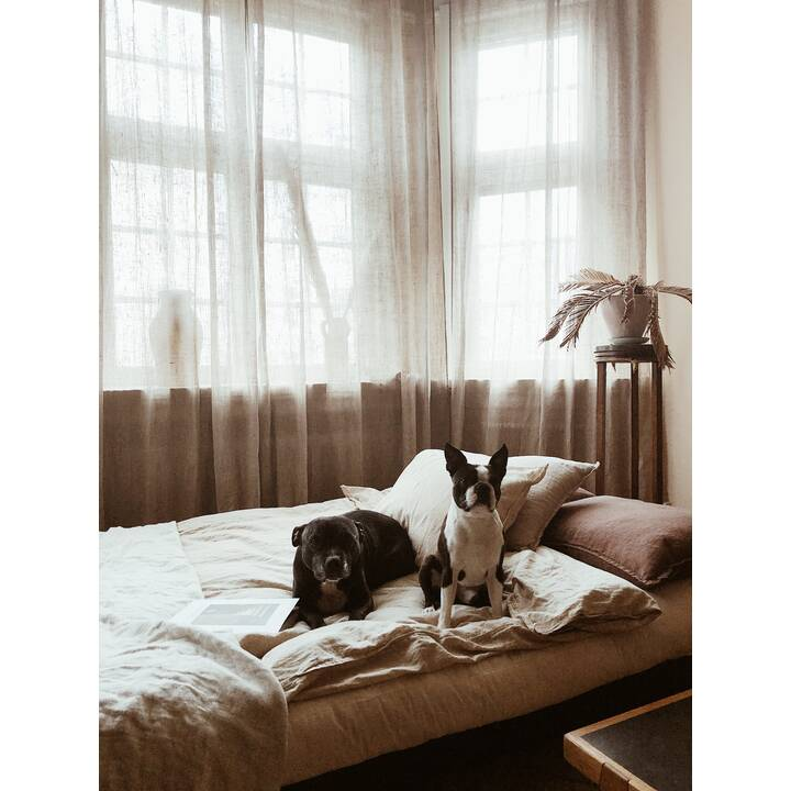 KARUP DESIGN Fresh Divano letto (Poliestere, Grigio scuro, 200 cm x 100 cm)