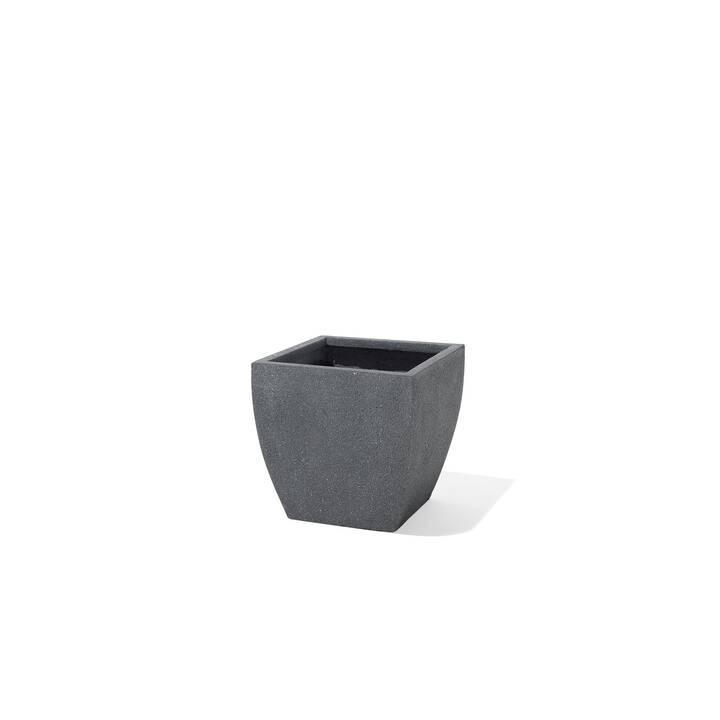 BELIANI Vaso Oricos (39 cm)