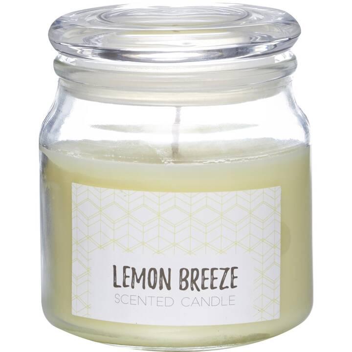 BALTHASAR Lemon Breeze Duftkerze (1 Stück)