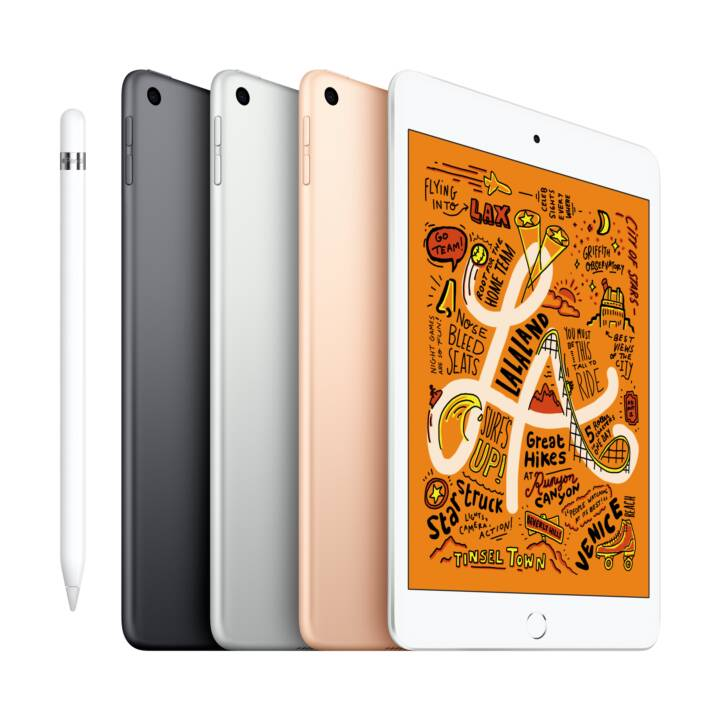 "APPLE iPad mini Wi-Fi 2019  (7.9 "", Apple A12 Bionic, 64 GB)"