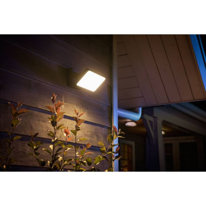 PHILIPS hue Welcome (LED, 30.0 W, Schwarz)
