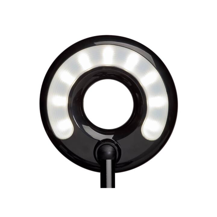 MAUL Lampe de table MAULcircle (Noir, LED)