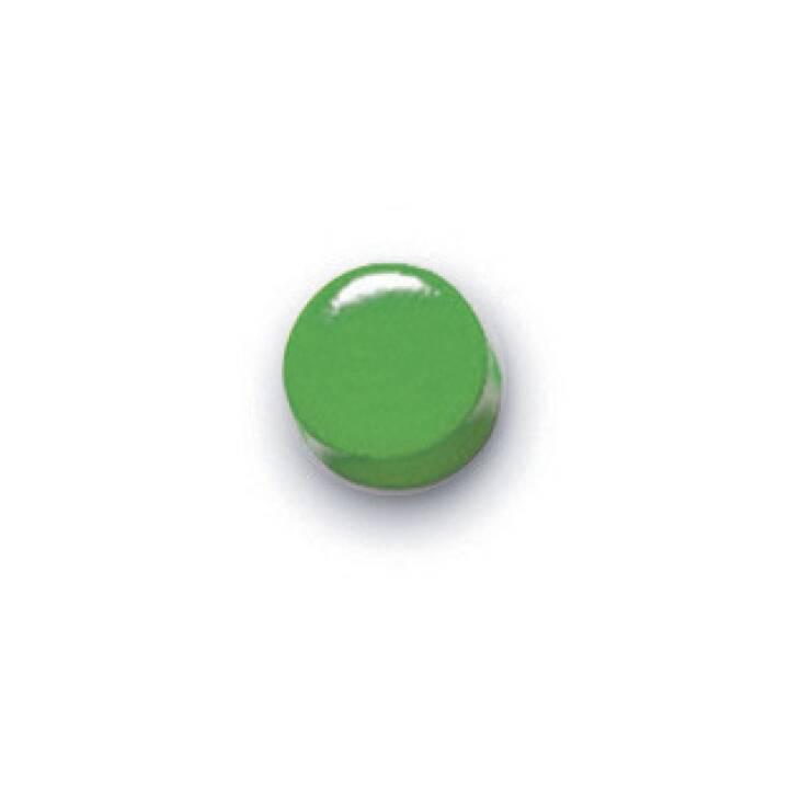 MAGNETOPLAN  Rundmagnet grün 10 Stk. lackiert 8x5mm grün