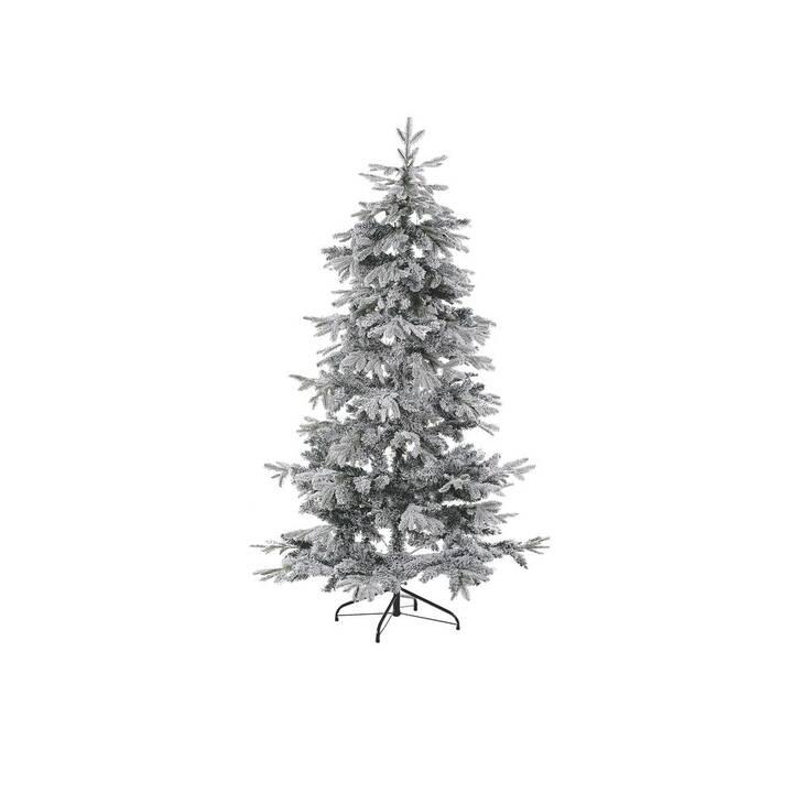 BELIANI Weihnachtsbaum Tomichi (1 Stück)