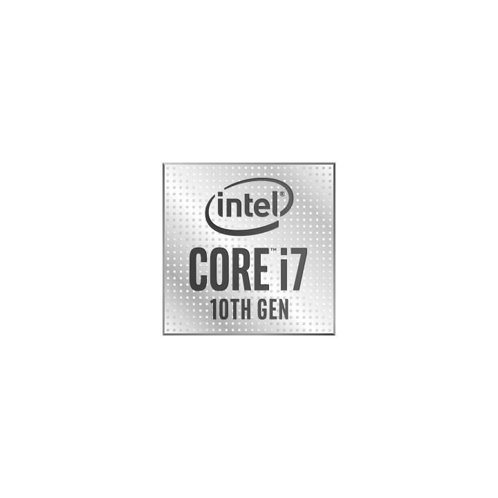 ERAZER Hunter X10 (Intel Core i7 10700K, 16 GB, 512 GB SSD)