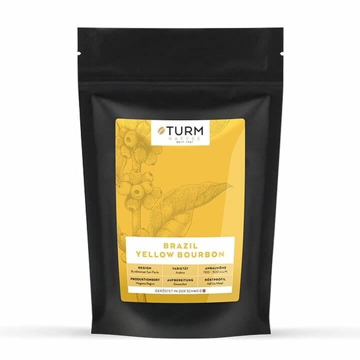 TURM KAFFEE Kaffeebohnen Caffè Crema Brazil Yellow Burbon (250 g)