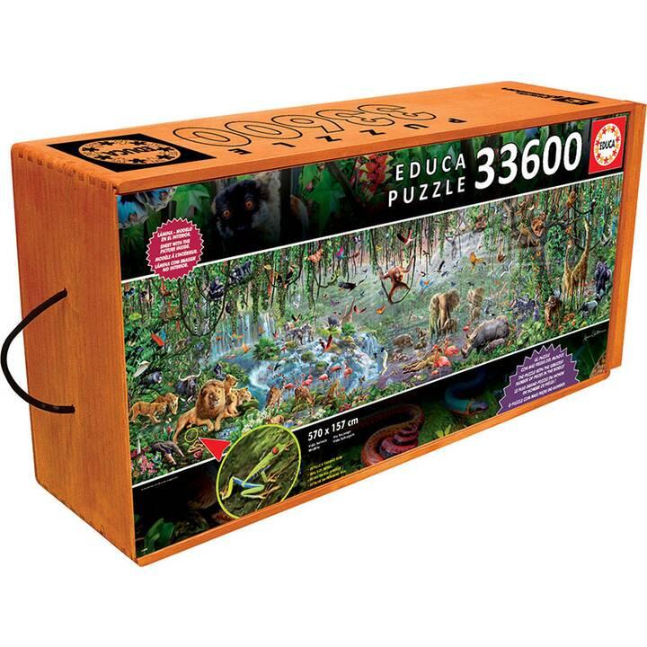 EDUCA Animali Puzzle ( 33600 x)