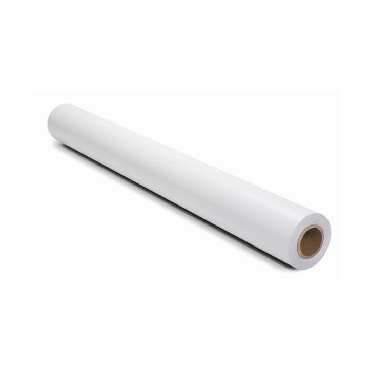 HP Q6576A Fotopapier (106,7 cm x 30,5 m, 1 Stück)
