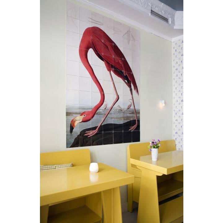 IXXI Wandtattoo Flamingo (Mehrfarbig)